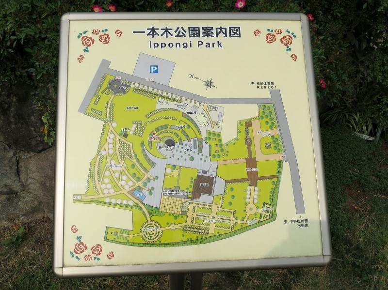 長野県中野市信州なかのバラまつり中野市一本木公園