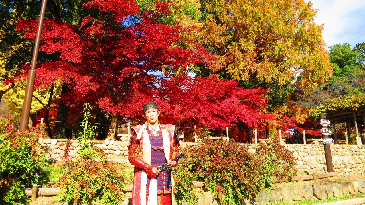 上田城NHK大河ドラマ真田丸真田幸村観光ガイドツアー
