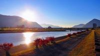 秋紅葉 朝陽の千曲川のほとり
