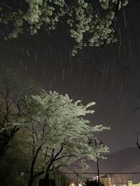 星空と夜桜 上山田温泉お薬師さん