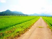 上田市塩田平の田園風景